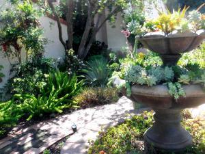 San Diego Garden
